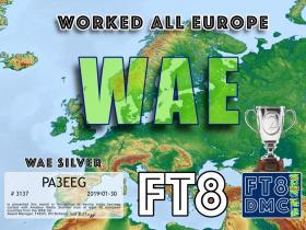ft8dmc_019-02_WAE-SILVER_large